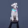 Cool Light UP RGB LED DOG Collar Multi-color Light Led Pet Collar Custom Size Flashing Dog Collar Glowing In Dark