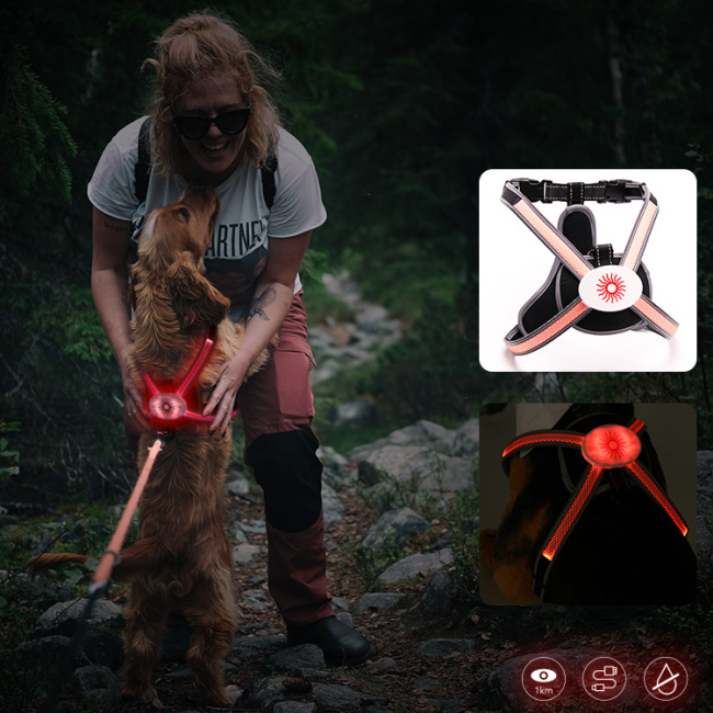 14 Years Manufacturer Led Harness for Dogs RGB Colorful Led Light Harness Vest