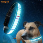 Colorful Stripe Glow In the Dark Dog Collar Luminous Pet Cat Collar for Night Safety