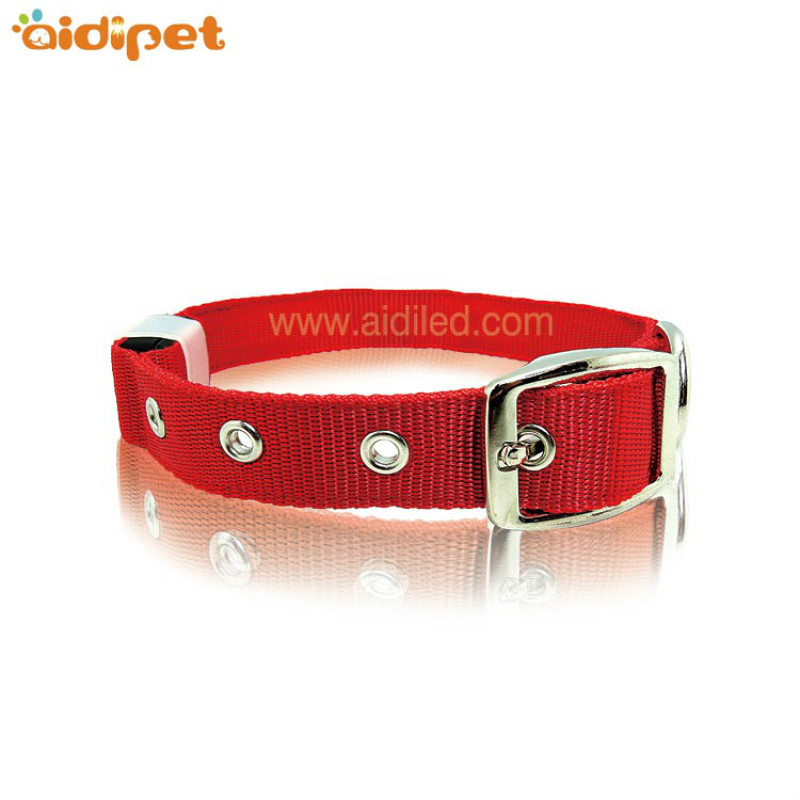 Metal Pin Buckle Strong Light Up Dog Collar with Rechargeable Battery Custom Logo Dog Collar
