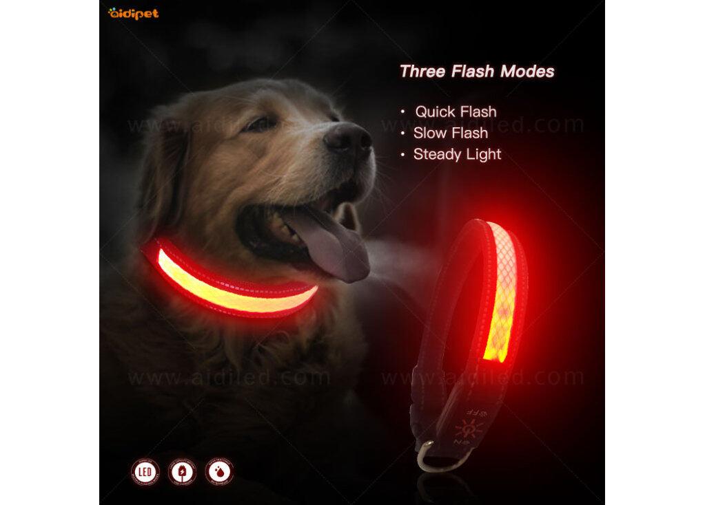 The LED Polyester Webbing Dog Collar