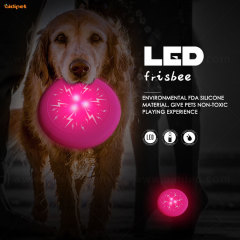 led dog toys for outdoor playing
