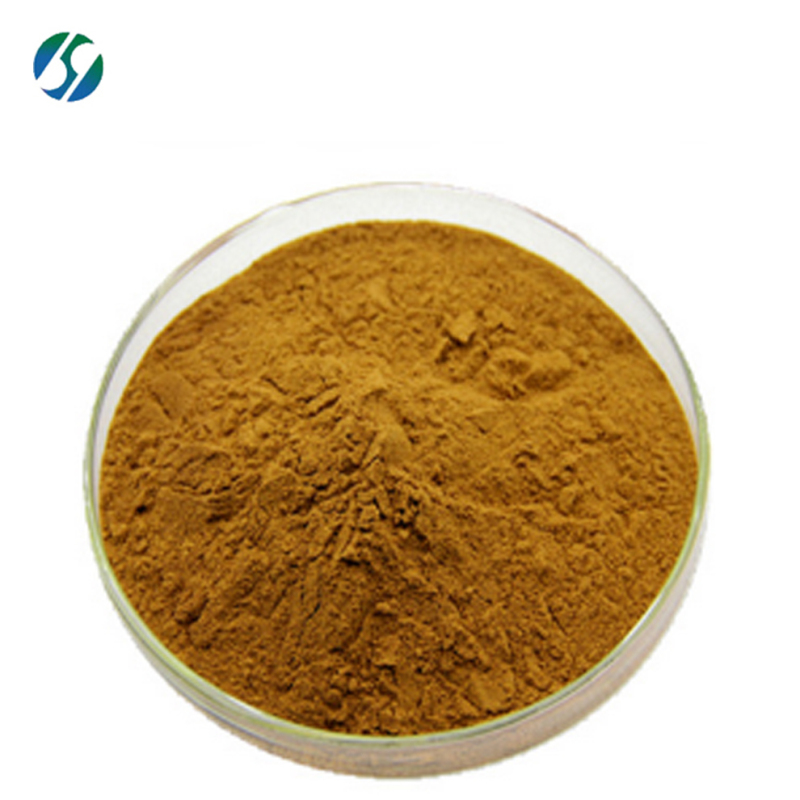 Factory Supply  ganoderma lucidum extract with best price