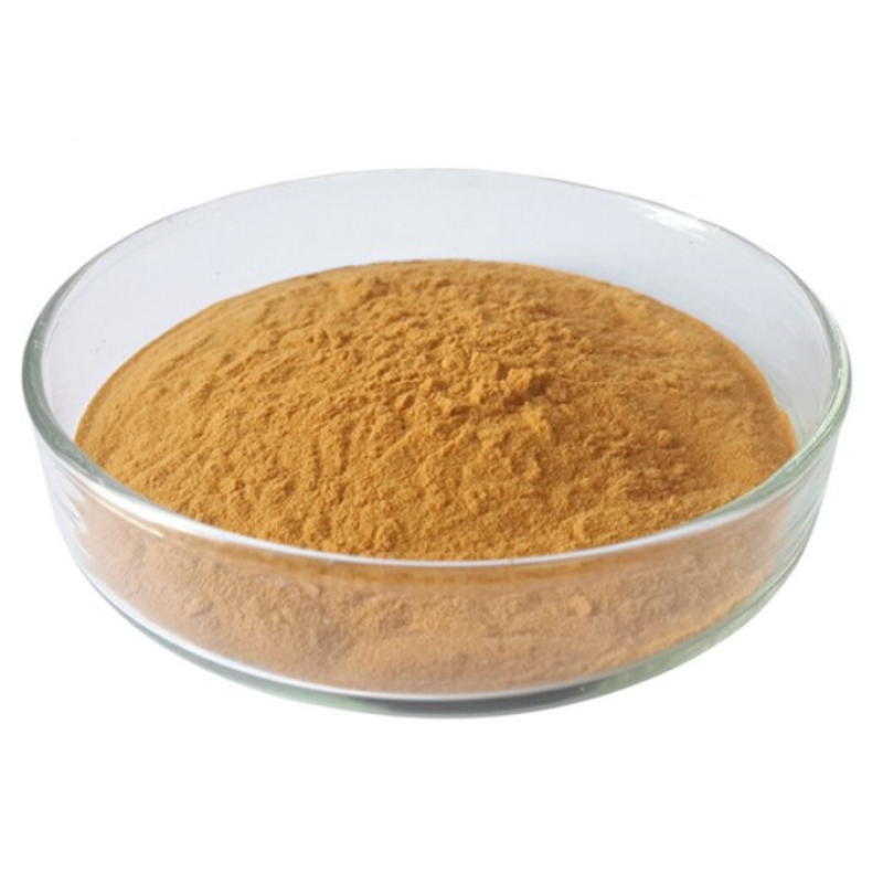 Factory Supply black truffle powder  with best price