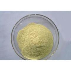 Manufacturer supply best price mangiferin