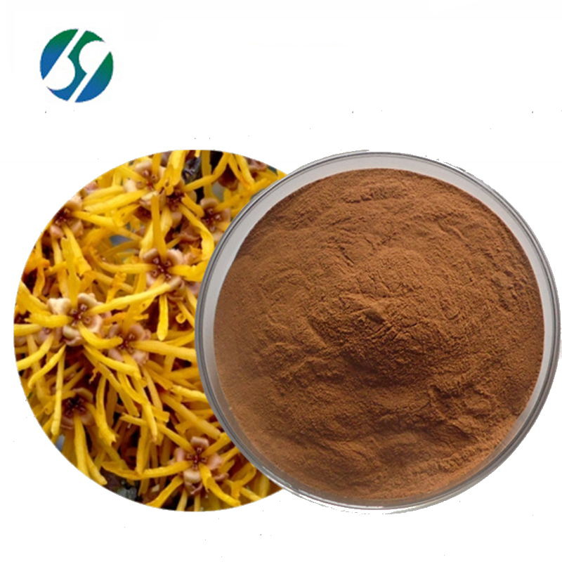 Hot selling high quality witch hazel extract with best price