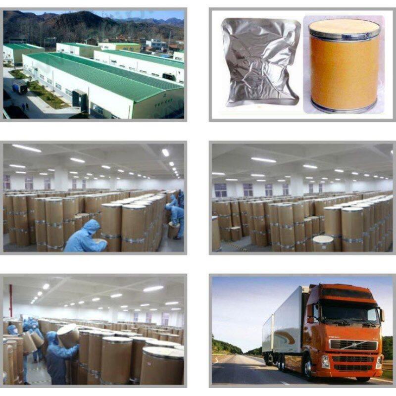 Factory Price Food Grade calcium lactate