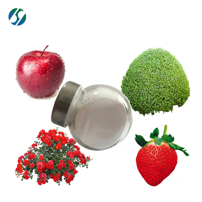 High quality insecticide dinotefuran/98%TC Dinotefuran with best price 165252-70-0