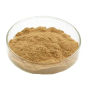 Top quality vitamin c water soluble rose hip extract powder