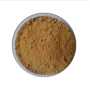 Factory  supply best price eucommia ulmoides extract