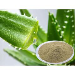 cosmetic grade organic bulk freeze spray dried aloe vera gel powder 200:1