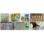 Factory supply high quality chlorella powder