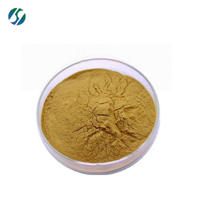 Factory supply Natural Pure ginger extract 90% 6-gingerol