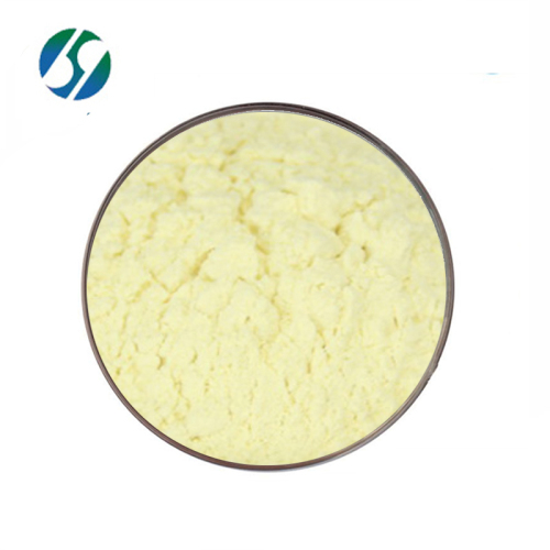 Factory provide high quality amphotericin b with best price 1397-89-3
