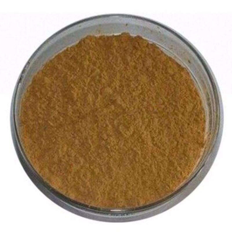 Wholesale High Quality Organic Fertilizer Bacillus megaterium