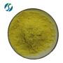 Factory Price Bulk Pure Natural quercetin extract 95% 98% quercetin