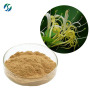 Hot sale  high quality 100% nature honeysuchle flowers extract with reasonable price and fast deivey !