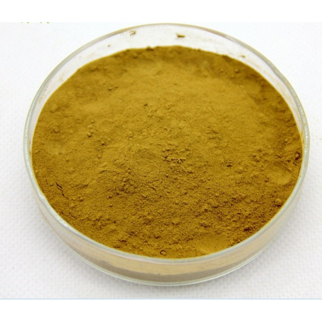 Hot selling high quality Momordica Grosvenori Extract Mogroside V 88901-36-4 with reasonable price and fast delivery