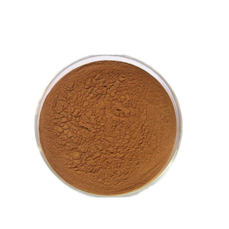 Factory Supply valerian root extract / valerienic acid / Valerian extract powder