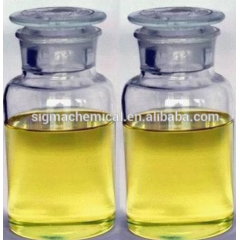 Manufacture supply high quality pure nature black currant oil / black currant seed oil