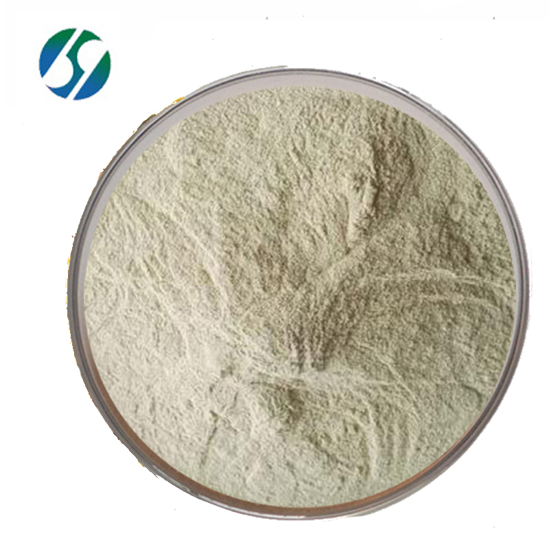 Factory Price Feed Additive Bacillus Laterosporus
