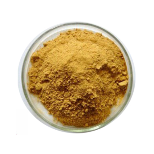 Factory Price Pure gingerol supplement ginger root extract gingerol