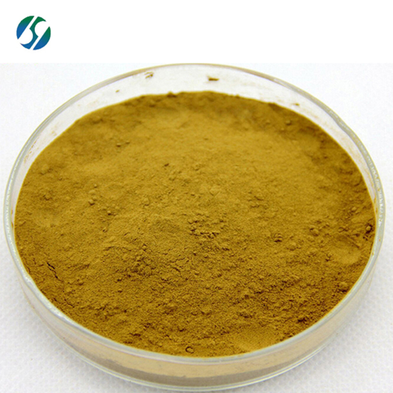 High quality Ox Bile with best price 75302-04-4