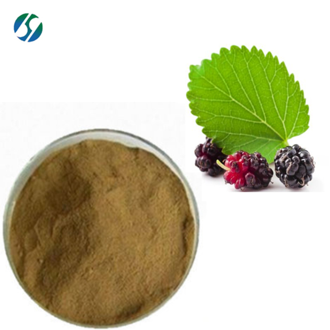 Natural (DNJ)100% water soluble mulberry leaf extract 19130-96-2 with 1-Deoxynojirimycin for hot selling !