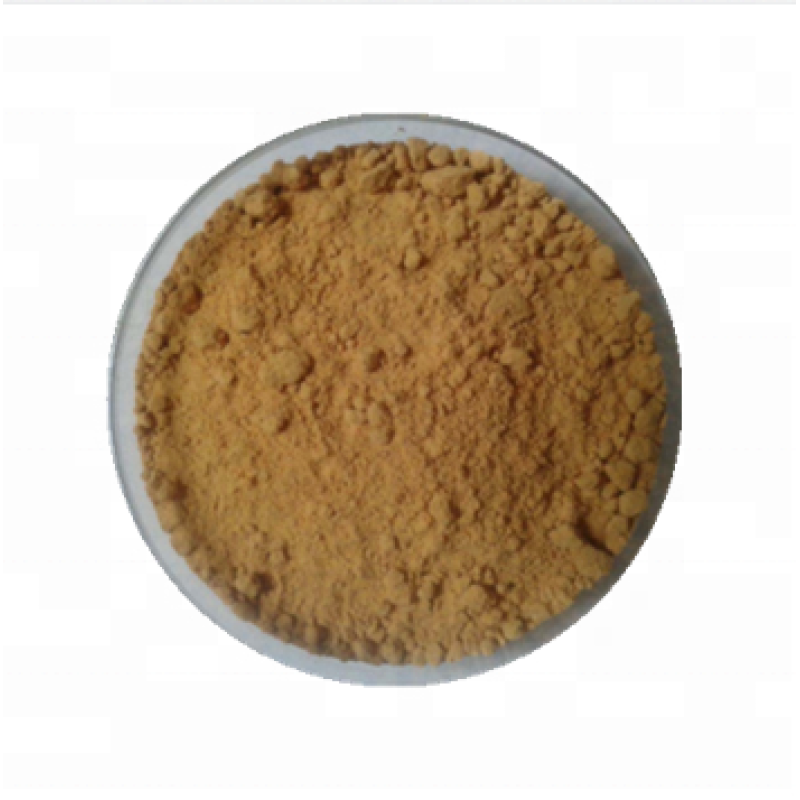 Factory supply organic powder burdock root extract