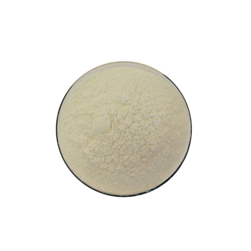 Factory suoply high quality CAS 9001-85-8 Phospholipase B