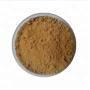 Factory Supply Natural Pure Lions Mane mushroom hericium erinaceus extract powder