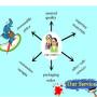 Hot sale electrophoresis agarose with reasonable price CAS 9012-36-6