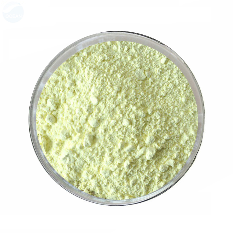 Supply  Sophora Japonica Extract with best price