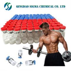 Wholesale bodybuilding Peptide fst344 follistatin344  I FST Follistatin 344 I FST-344 80449-31-6