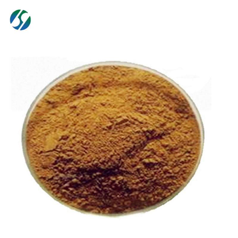 Factory Supply Pure hawthorn berry extract powder / hawthorn berry extract