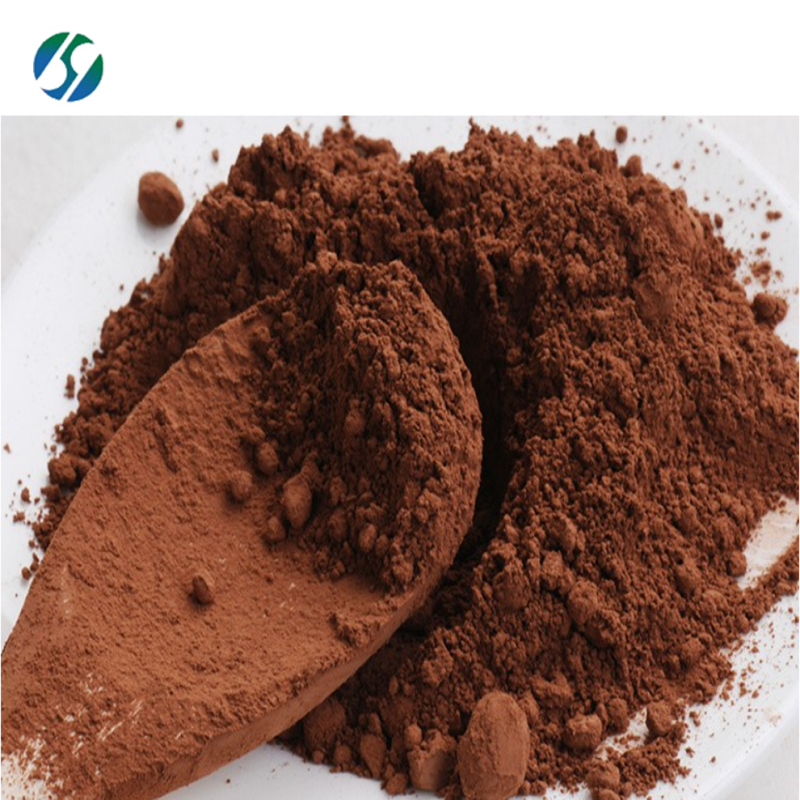 Food additive Natural Pure  cocoa bean extract powder cocoa extract