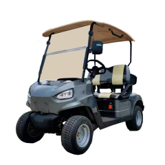 Chinese Manufacturer High quality cheap 2 seat golf car Electric golf cart for sale