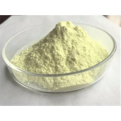 GMP Factory supply Food Additives CAS 153-18-4 Rutin with reasonable price and fast delivery on hot selling