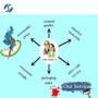 Hot Sale High Purity API Powder Tamoxifen citrate 54965-24-1