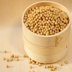 Hot selling high quality food grade soy protein concentrate with best price !