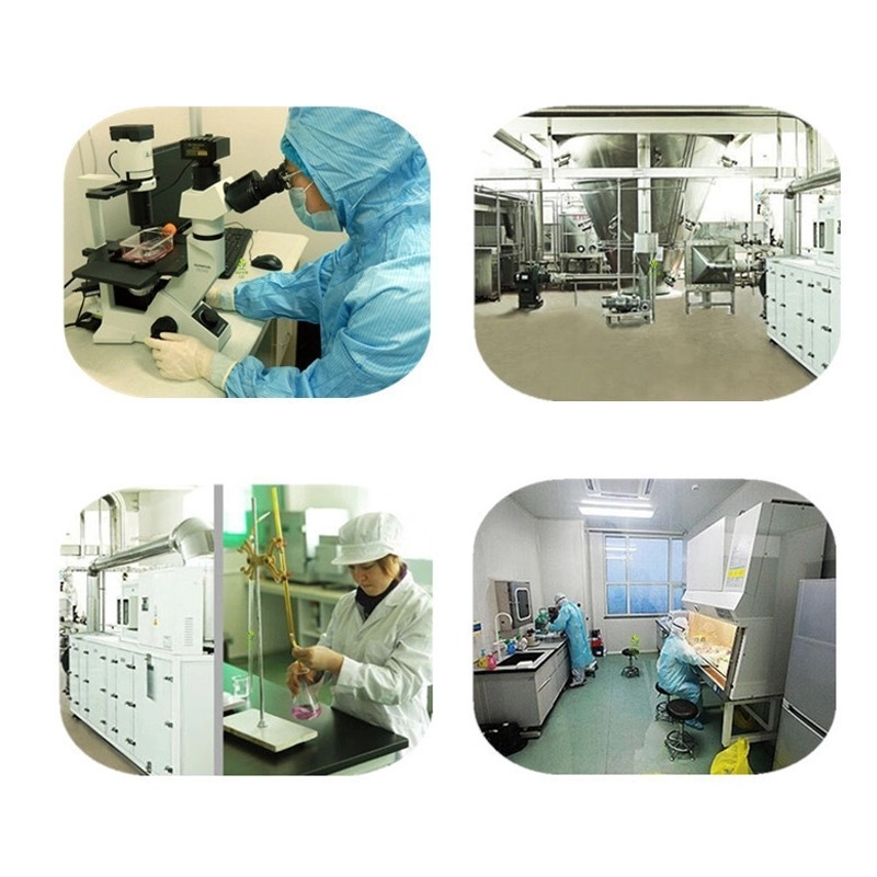 Factory supply high quality bulk Pure Dihydromyricetin DHM