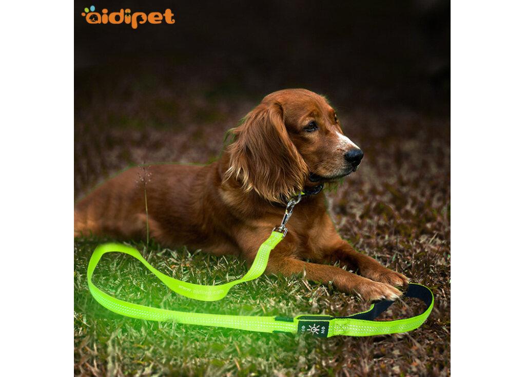 LED Dog Rope
