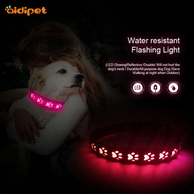 2019 NEW Arrival Led Dog Collar and Leash Hollow Pattern Rechargeable Led Collar for Dog