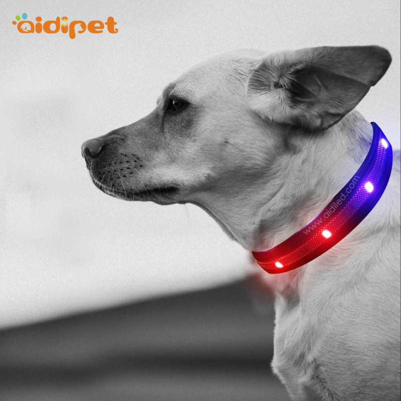 Colorful Light Led Glow Dog Collar Leash Rechargeable Amazing Light Up Dog Collar Necklace