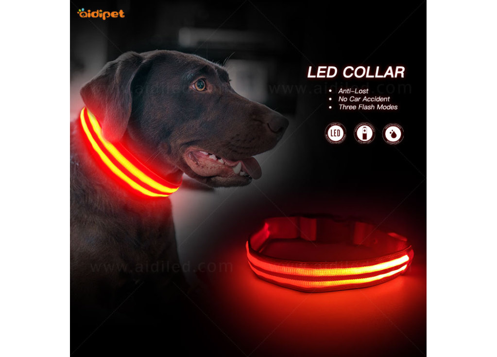 Tips for Buying the LED Dog Collars