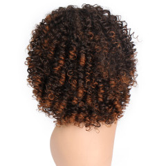 Short curly hair Fashion Curly Human Hair Wig Natura