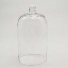Glass Domes-FH23025Z