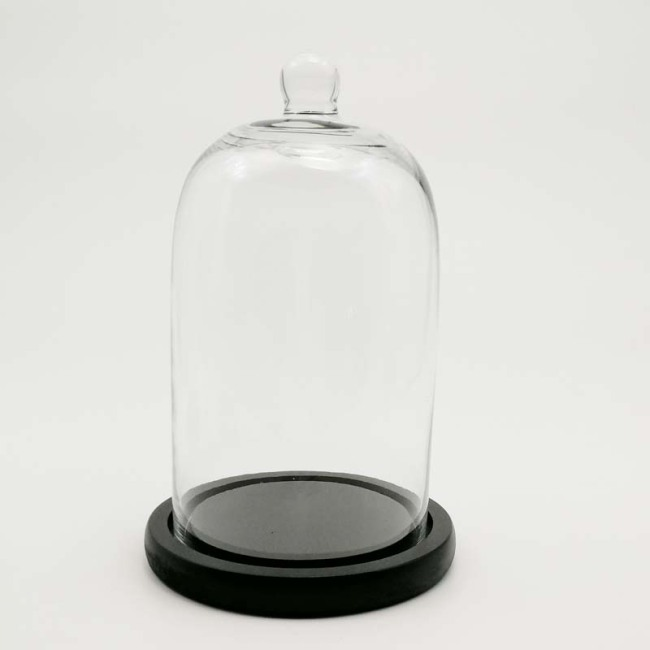Glass Domes-FH23025ZB1