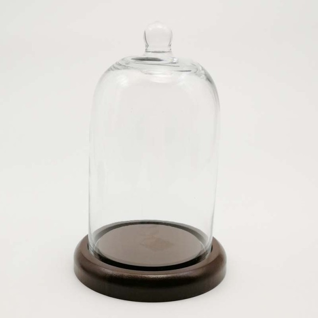 Glass Domes-FH23025ZB2