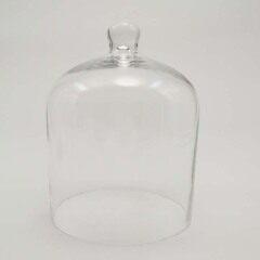 Glass Domes-FH23026Z